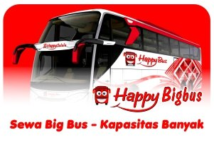 Happy Bigbus